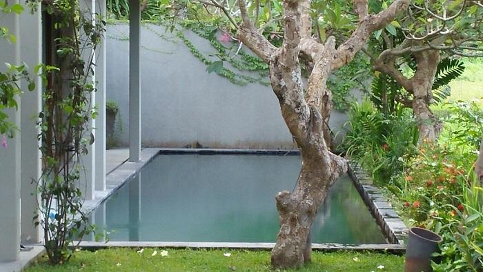 Butuh Jasa Perawatan Kolam Renang di Bali